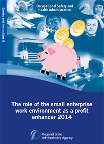 The role of the small enterprise work environment as a profit enhancer -publication