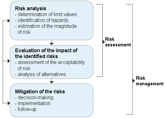 Graph: Phases of risk management process